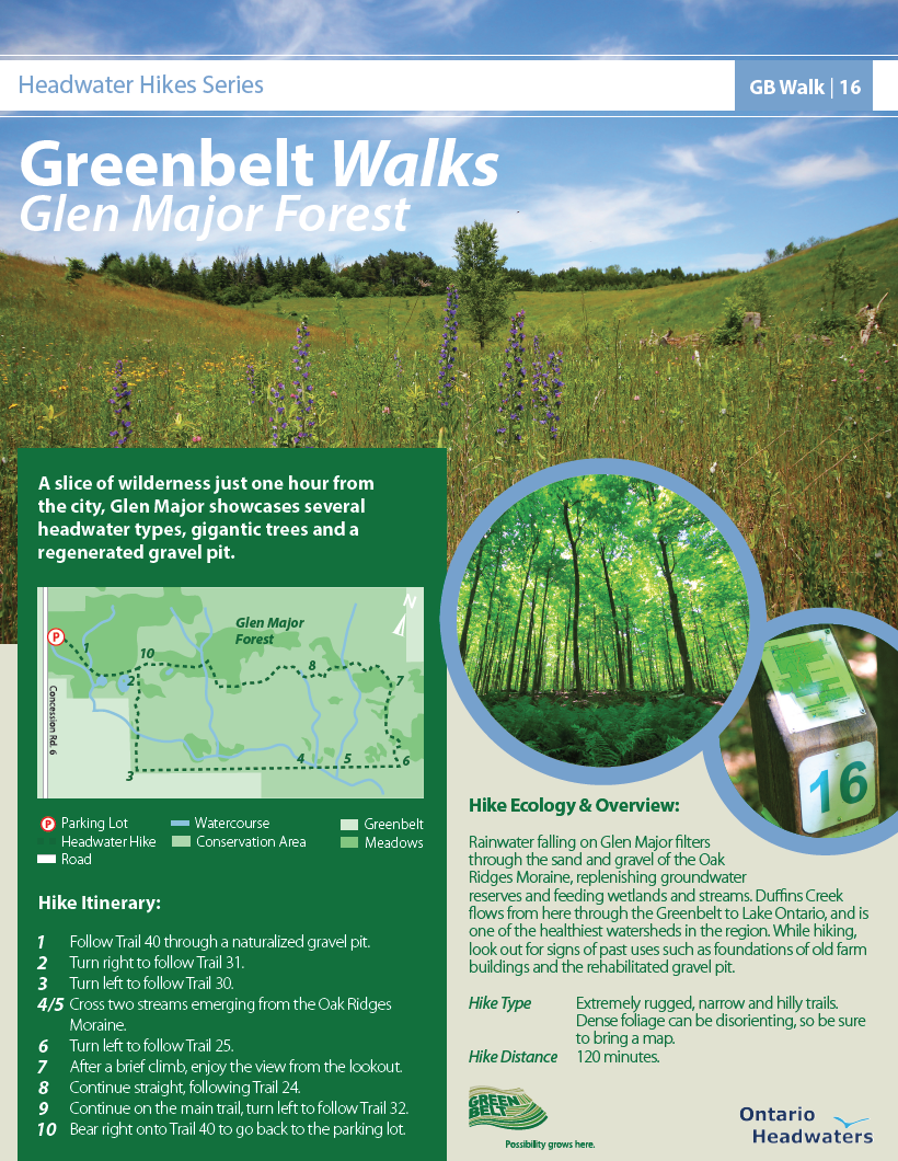 16Headwater_Hike_Glen_Major_Forest.png