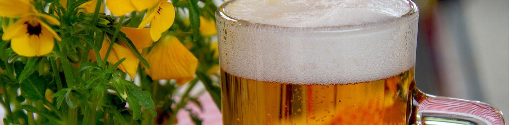 beer-banner.jpg