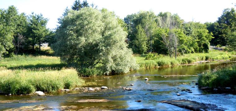 W. E. Burton Conservation Area