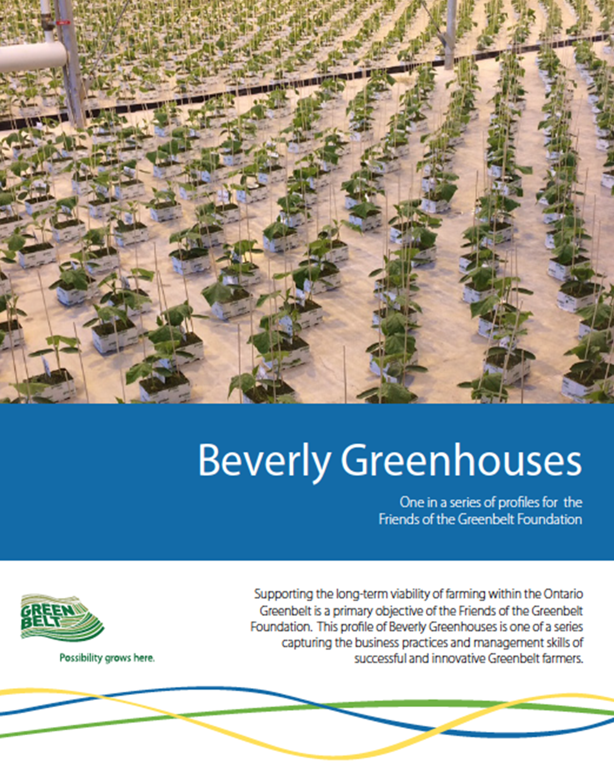Beverly-Greenhouses-Report-Cover.png