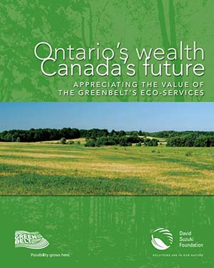 Ontarios-Wealth-ReportCover