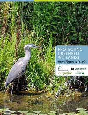 Greenbelt-Wetlands-ReportCover