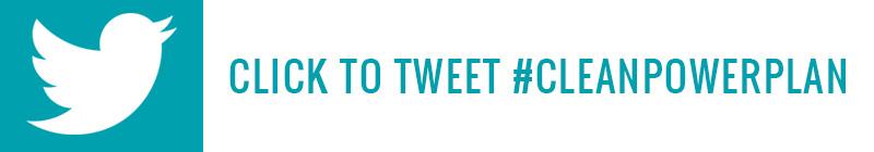 TCP_twitter_theme.jpg