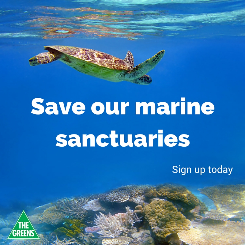 Sign_up_today_Marine_Sanctuaries_FB_post.jpg