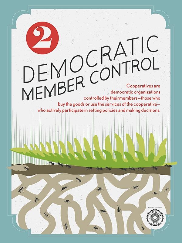 2DemocraticMemberControl.jpg