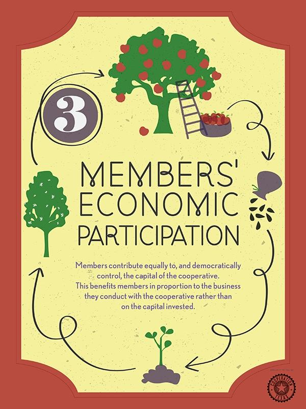 3EconomicMemberParticipation.jpg