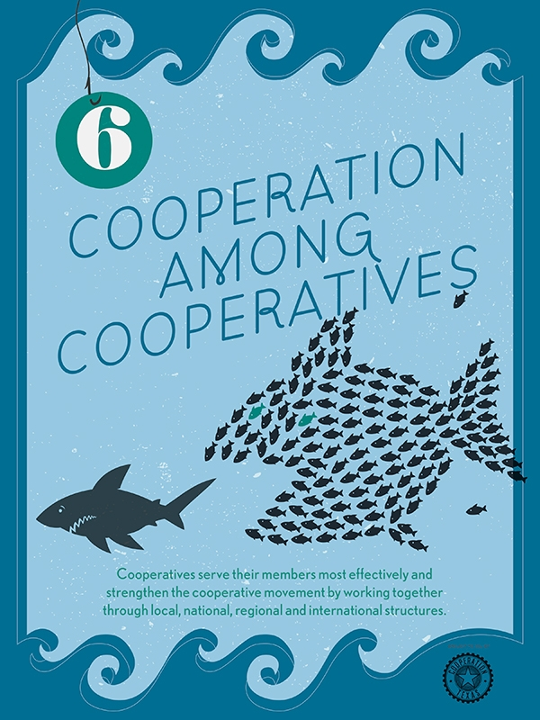 6CooperationAmongCooperatives.jpg