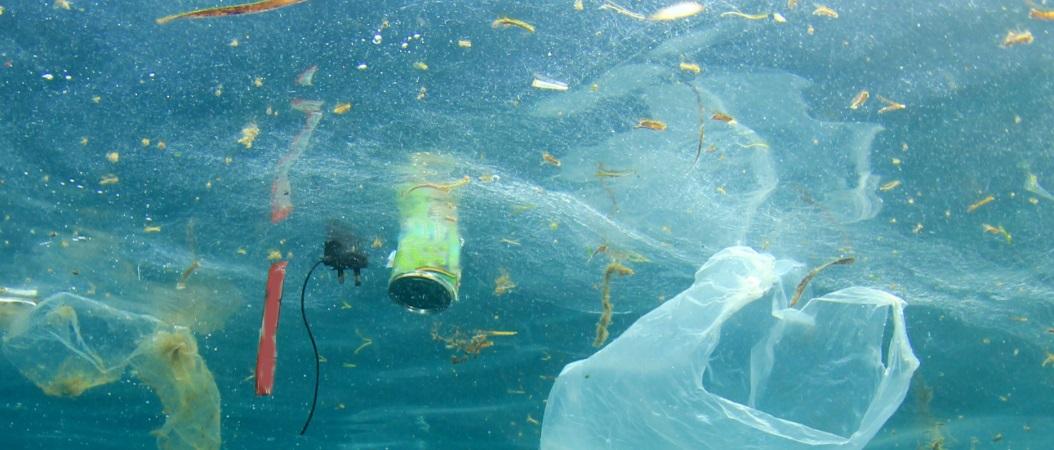 <h2>Afval & Plastic</h2><div>Vlamingen noemen zich graag sorteerkampioen, maar helaas zijn we ook kampioen in het produceren van afval. We moeten af van onnodige verpakkingen en wegwerpplastic.</div>