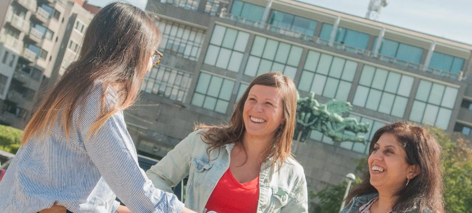 <h2>Menselijker</h2><div>Groen staat voor een verbindende, positieve aanpak. Bruggen bouwen tussen Oostendenaars is dringend nodig. Je veilig voelen waar je woont is en blijft een uitdaging.</div>