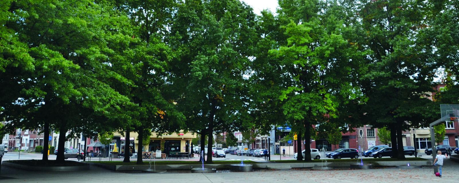 <H2>Groener en gezonder</H2> <div>Groen maakt gelukkig! Daarom investeren we in onze groene longen door Bouckenborghpark en het Fortje te gaan opwaarderen en zorgen we voor meer groen in de straten! </div>