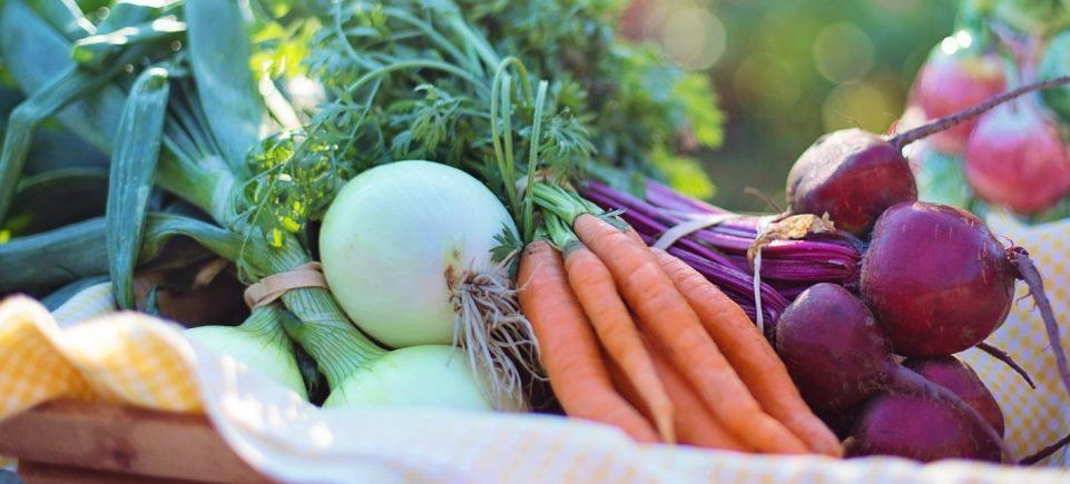 <h2>Landbouw & voeding</h2><div>Gent trekt ten strijde voor lekkere, lokale en duurzame voeding. Samen met heel wat partners lanceerde Tine 'Gent en Garde'. Daarmee is Gent de eerste Vlaamse stad met een eigen voedselstrategie.</div>