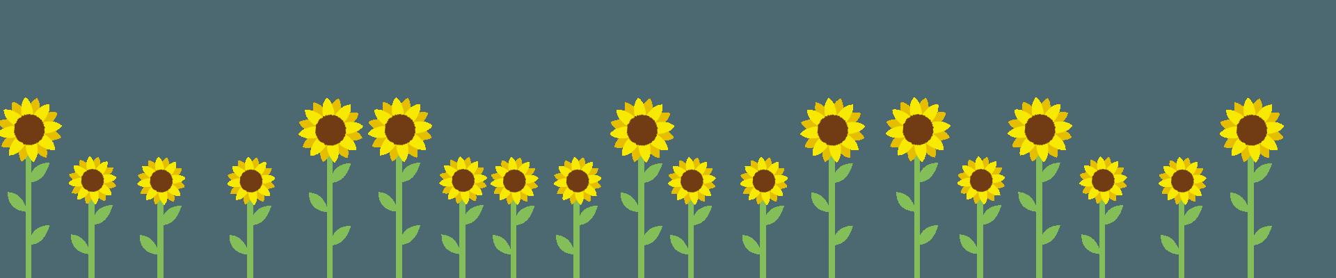 zonnebloemenbottom-8.png