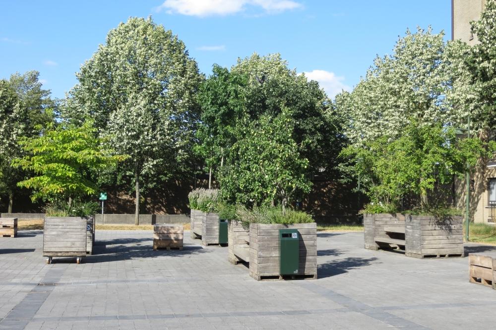 <h2>MEER GROEN</h2><div>Onze stad herdenken naar een echte parkstad met functioneel klimaat- en speelgroen.</div>