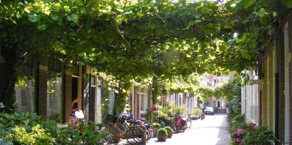 Wonen_in_de_stad_2.png