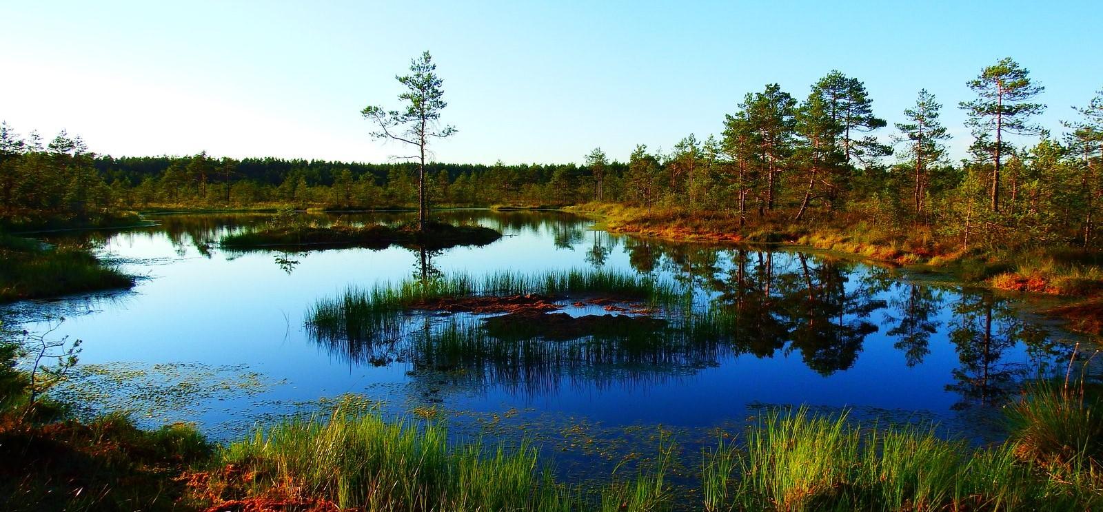 <h2>Open en groene ruimte</h2><div>Natuur maakt mensen gezonder en stimuleert creativiteit, zorgt voor een omgeving waar het goed wonen, werken en wandelen is. De bescherming hiervan is een hoofdzaak.</div>