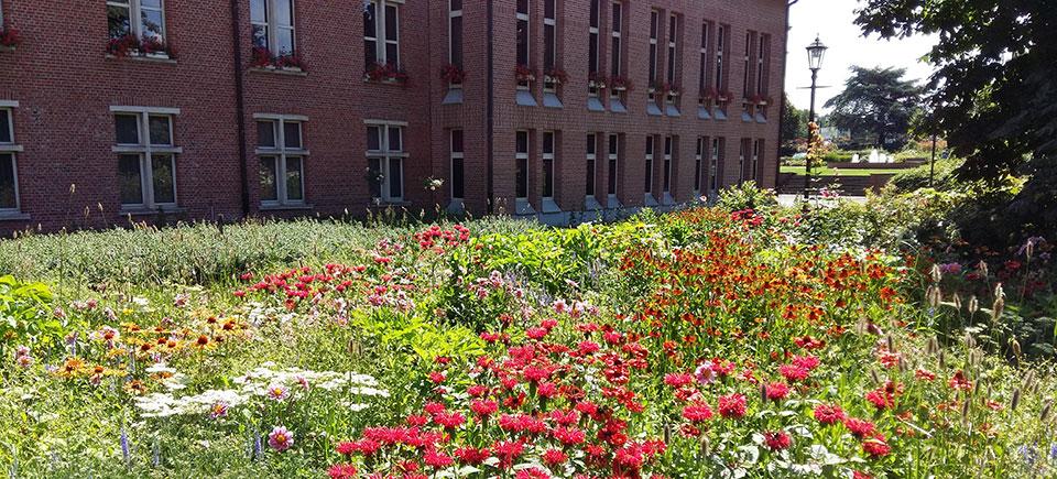 <h2>Sterk in groene ruimte</h2><div>Duffel is een groene gemeente. Dat willen we zo houden en, waar mogelijk, nog uitbreiden. We bewaren open ruimten (Senthout), planten een speelbos en organiseren een natuurfeest  </div>