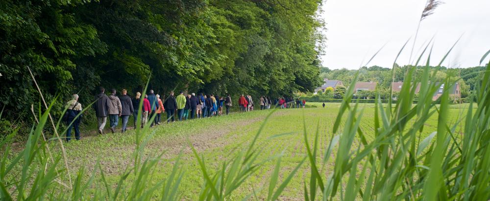 <h2>Kansen voor natuur</h2><div>Edegem is een groene gemeente. We investeerden volop in domein Hof ter Linden en Fort 5, maar bijvoorbeeld ook de open ruimte rond Mussenburg of de vallei van de Edegemse beek verdienen bescherming.</div>