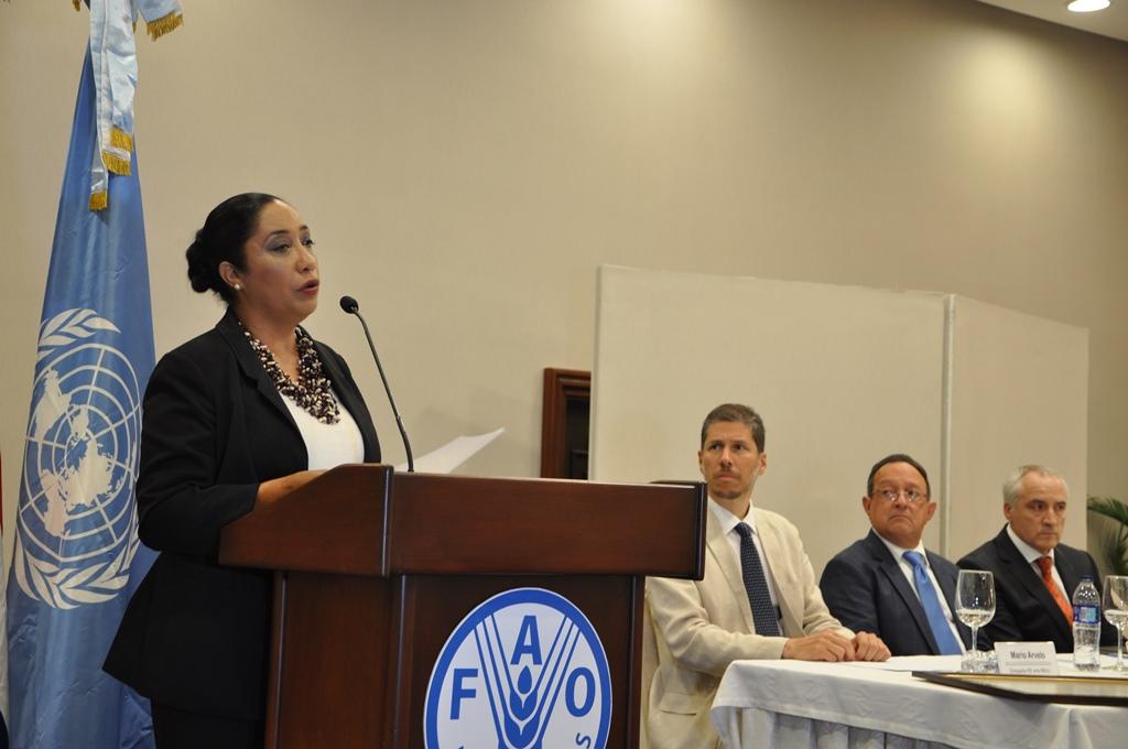 fao-designa-a-dominicana-guadalupe-valdez-como-embajadora-especial-hambre-cero_28720451714_o.jpg