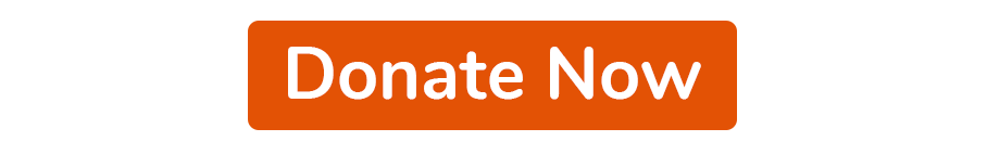 Donate now button in orange.