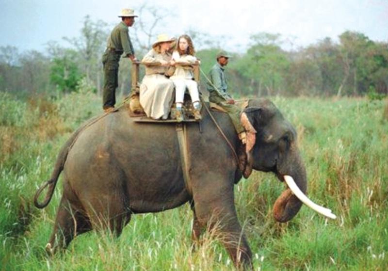 1470817463_hillary_elephant.jpg