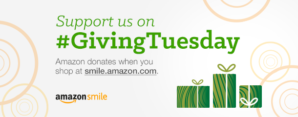 giving-tuesday.png