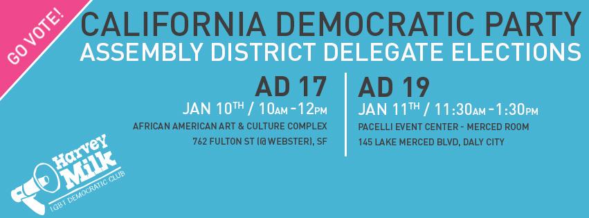 Delegate_Election_Cover.jpg