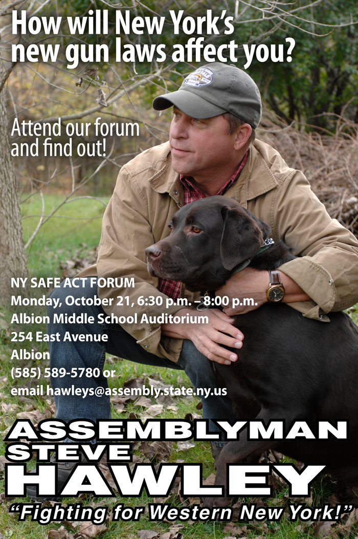 Hawley_NY2A_Forum_Share_Imagealbion.png