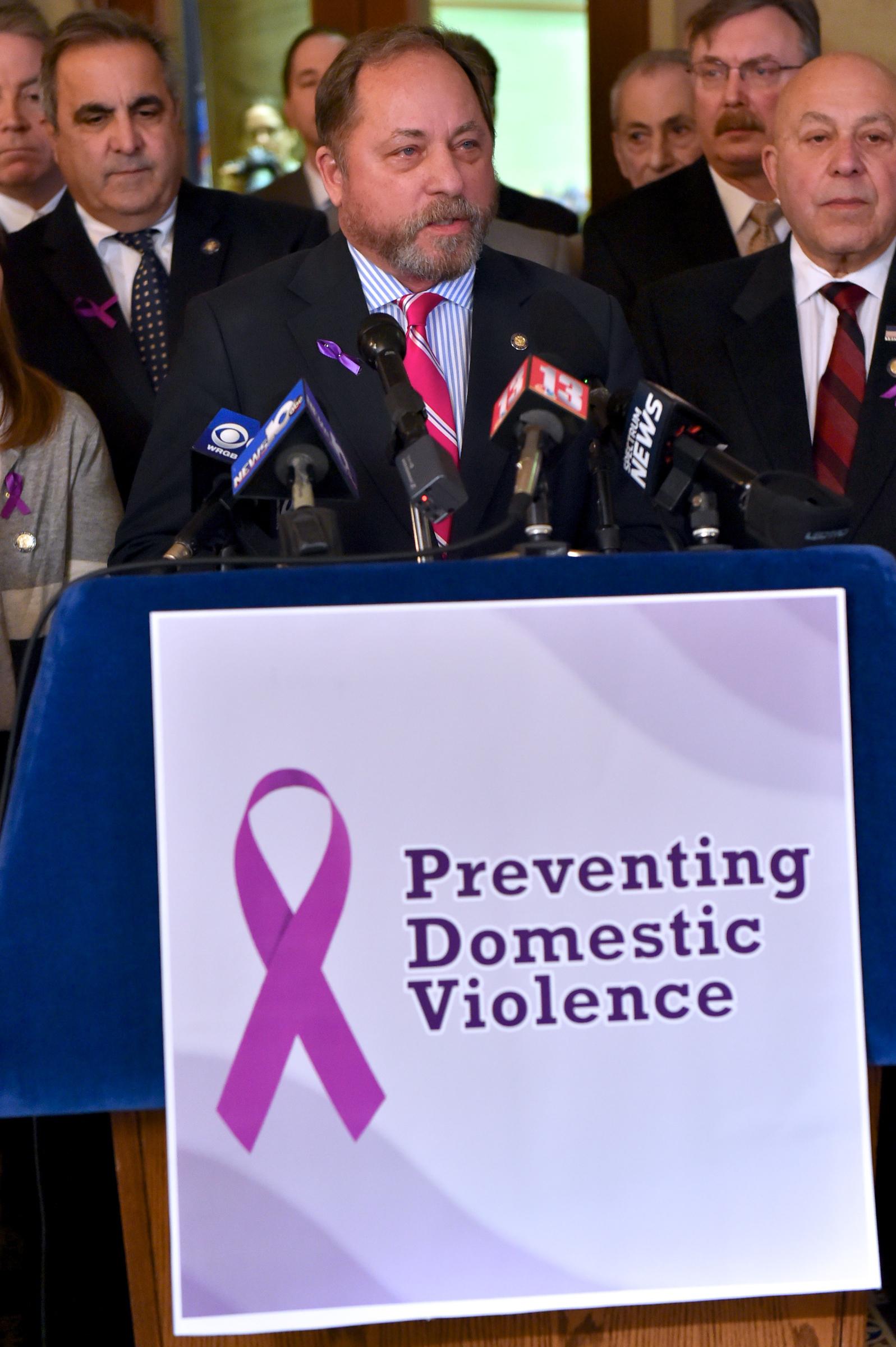Domestic_Violence_Presser_1-23-18.jpg