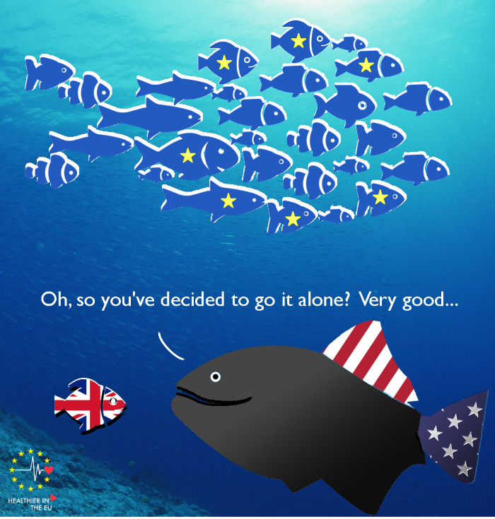 EU shoal vs US big fish