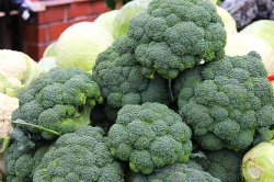 August4_ThursdayBroccoli.jpg