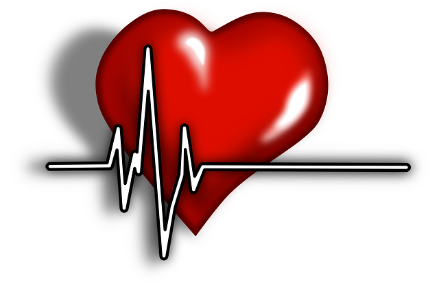 cardiac-156059_640.png