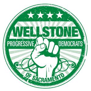 Wellstone_Final_Logo_300x300.png