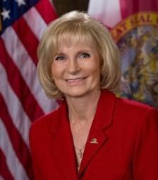 Sandra Murman for County Commissioner Dist. 6