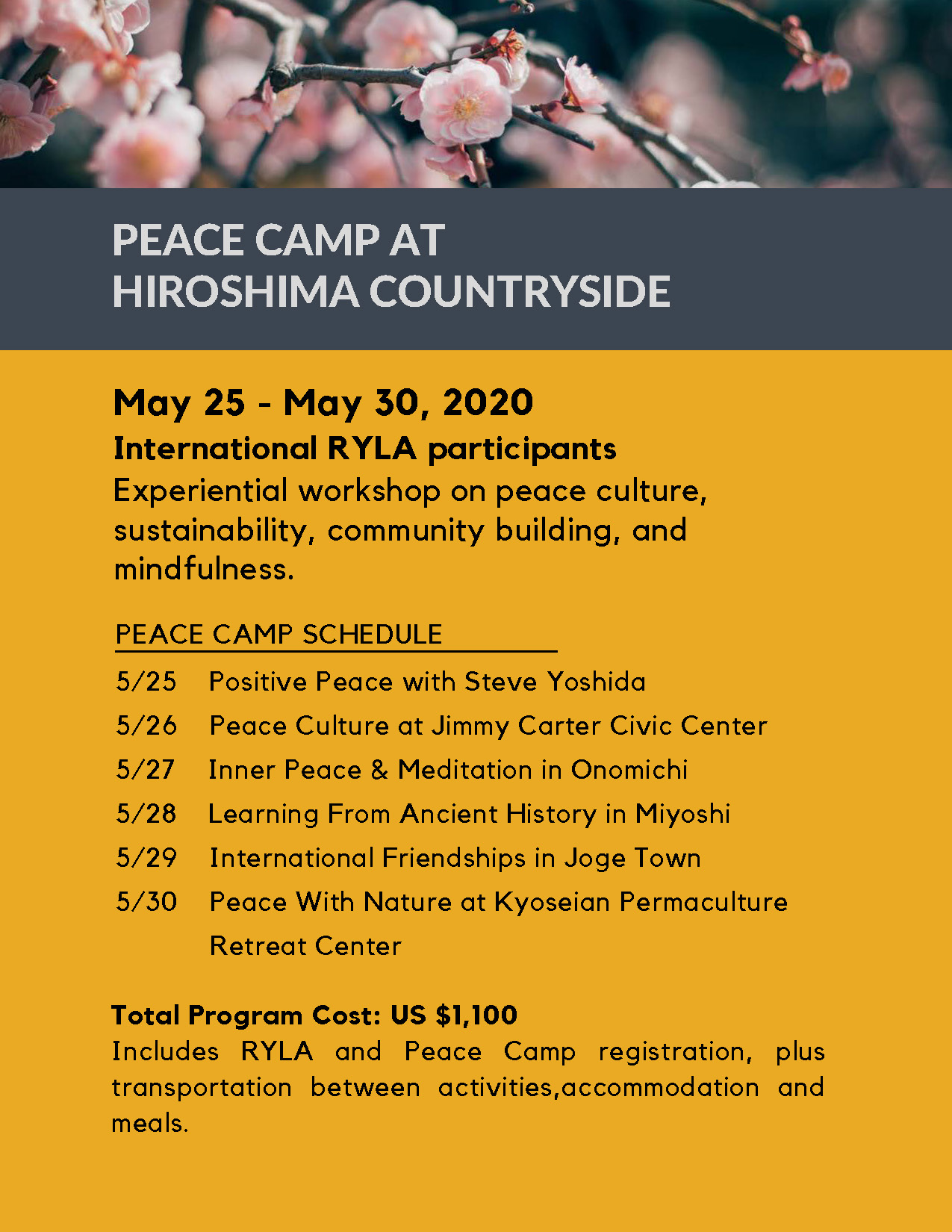 RYLA_IN_HIROSHIMA_Reduced_Size_Page_4.jpg