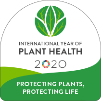 International Year of Plant Health - logo, 2020