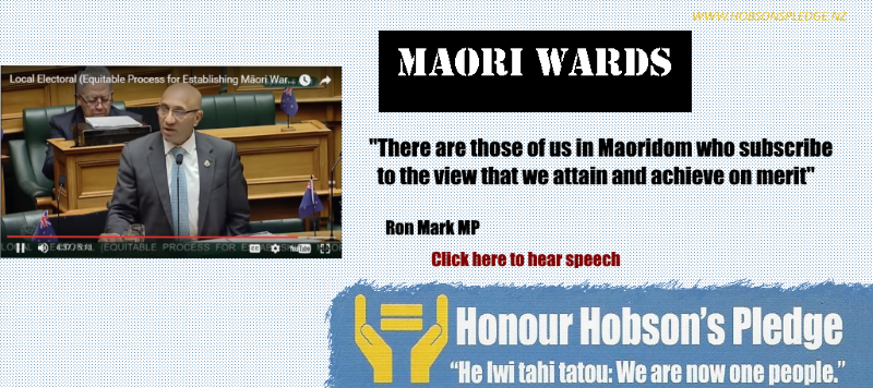 Ron_Mark_Maori_wards800X356.png