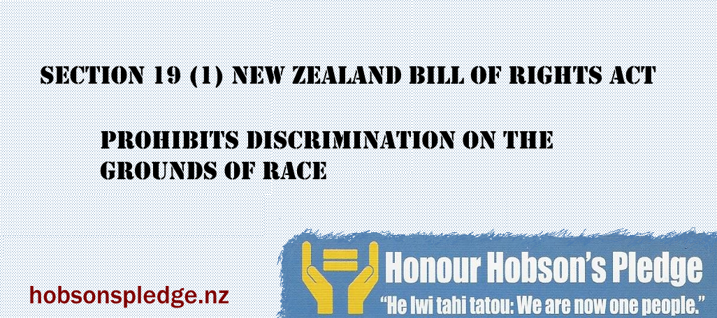 SECTION_19_1_PROHIBITS_DISCRIMINATION_ON_THE_GROUNDS_OF_RACE.png