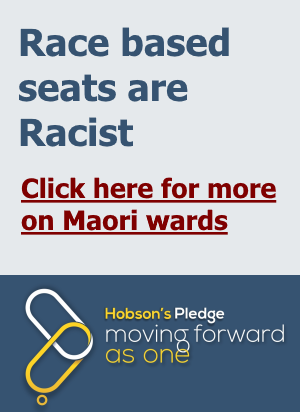 Maori_wards_LET_THE_PEOPLE_HAVE_A_SAY_yellow.png