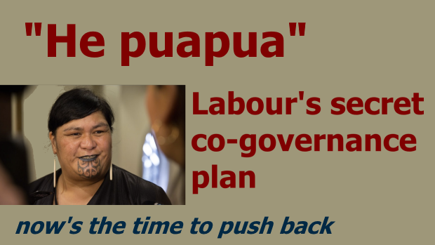 He Puapua - Labour's Plan for Co-governance by 2040