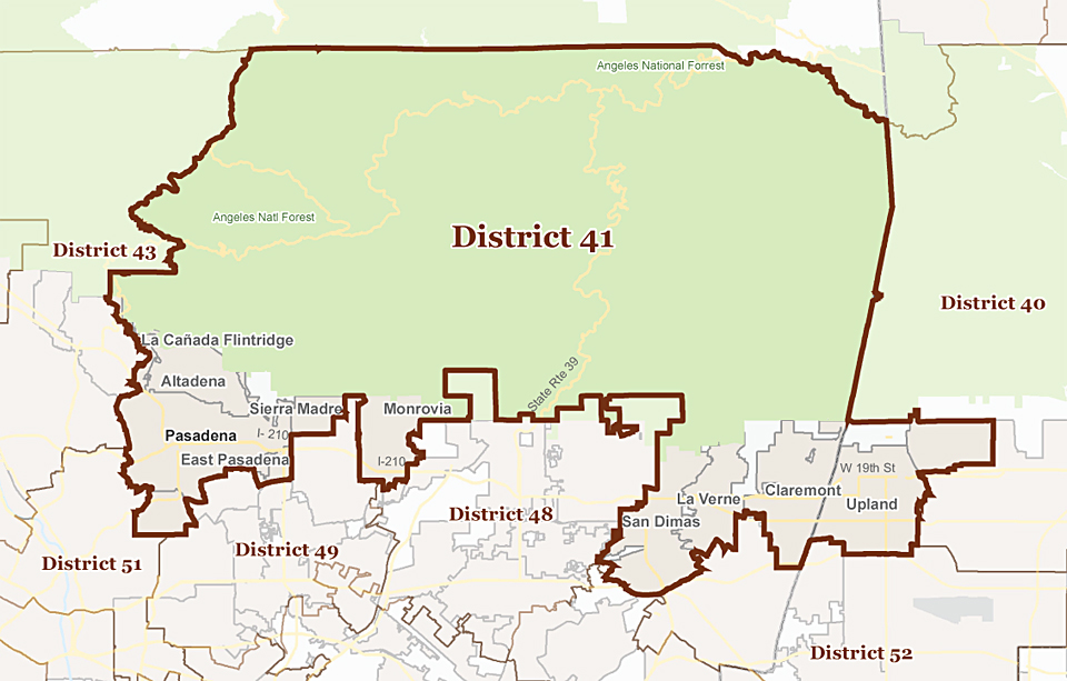 District41_large.jpg