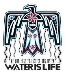 2019_Thunderbird_(Water_is_Life)(Decal).png