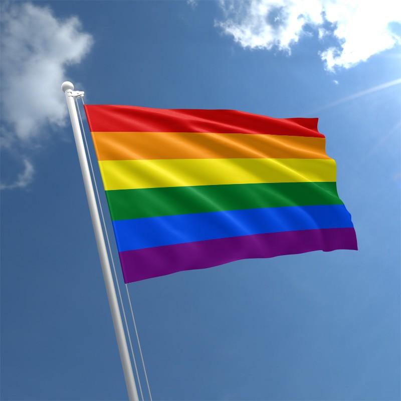 rainbow-flag-std_2.jpg