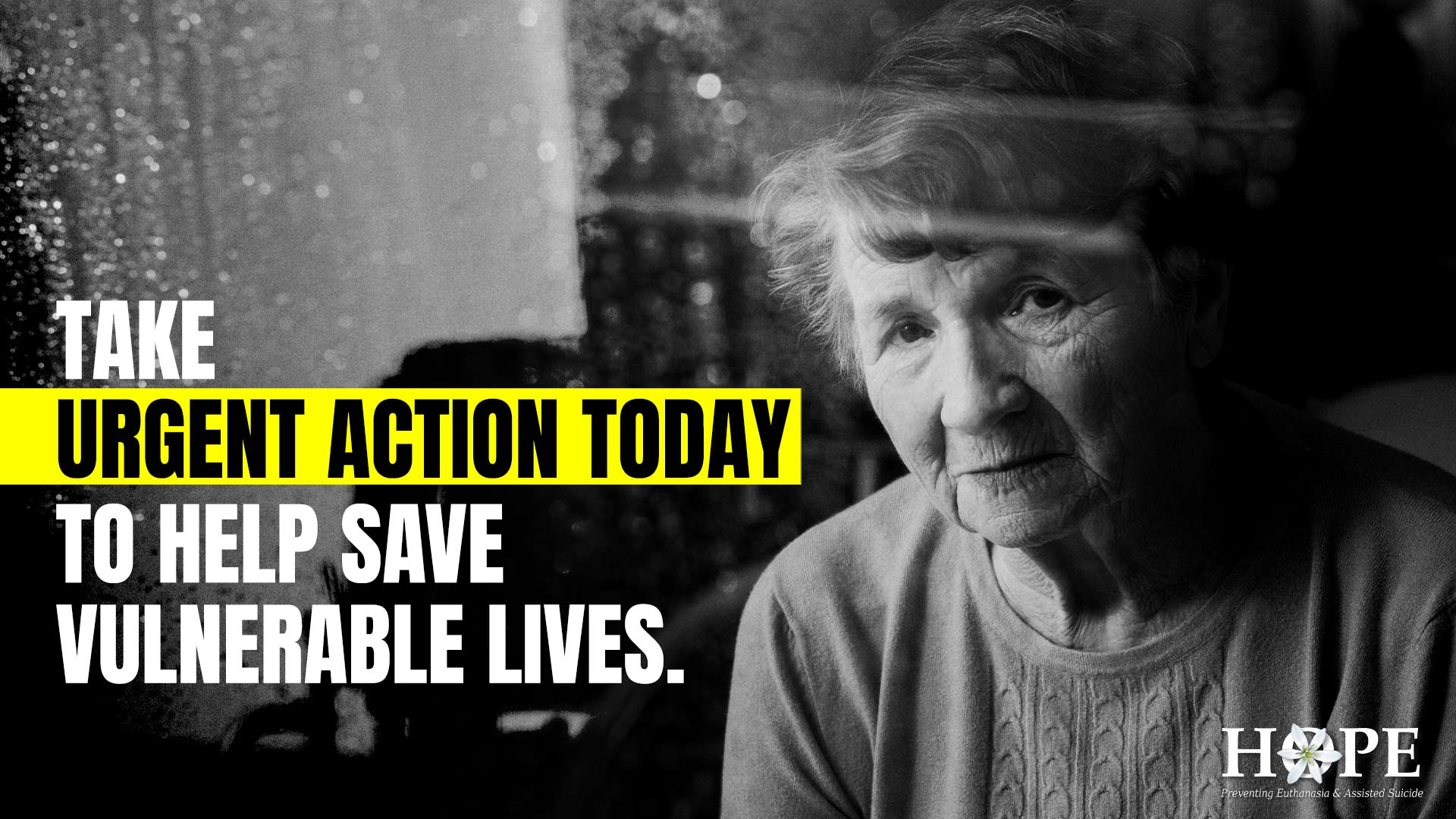 No Euthanasia Petition TAKE URGENT ACTION TODAY TO HELP SAVE VULNERABLE LIVES.
