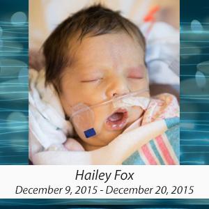 HaileyFox.jpg