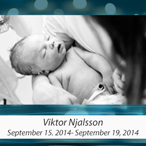 ViktorNjalsson.jpg