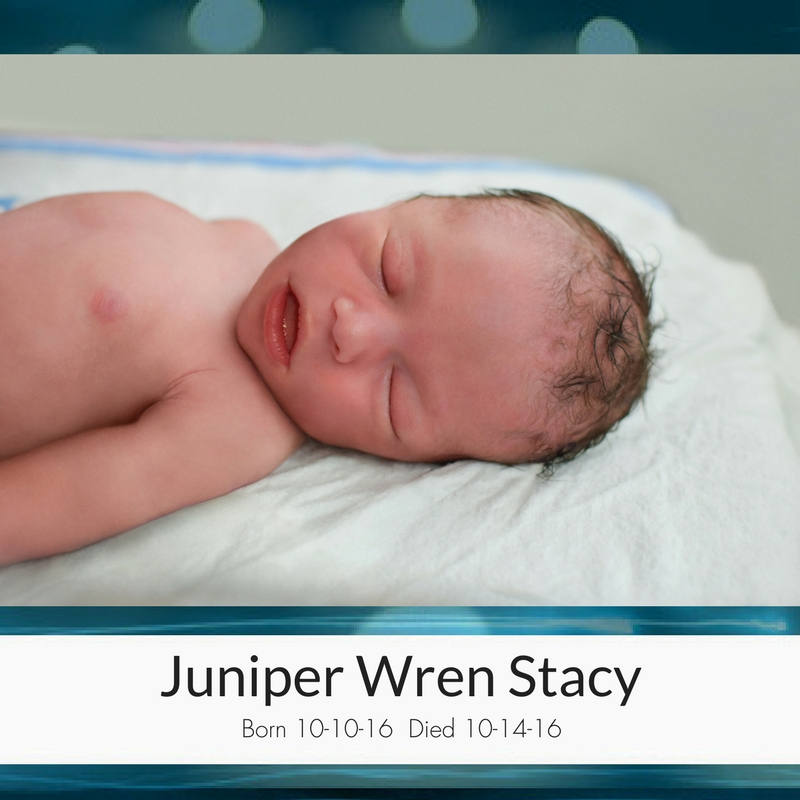 Juniper_Wren_Stacy_(1).jpg