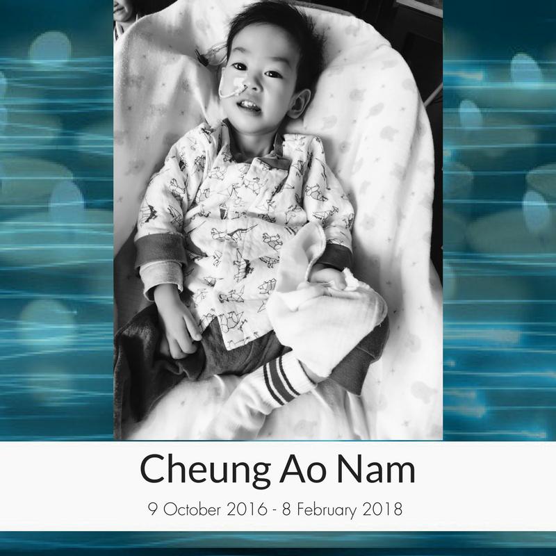 Cheung_Ao_Nam.png
