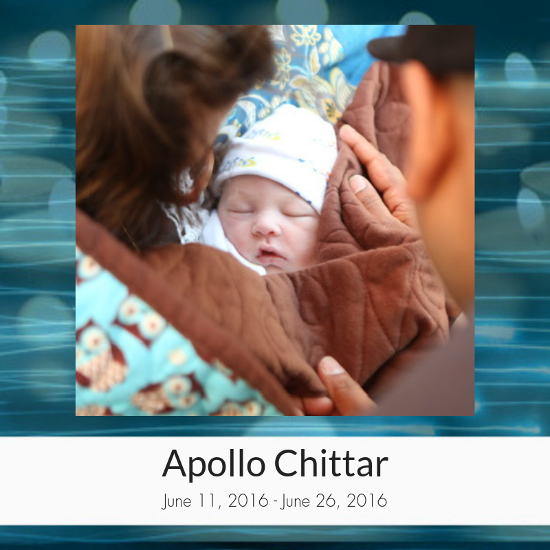 Apollo_Chittar.png