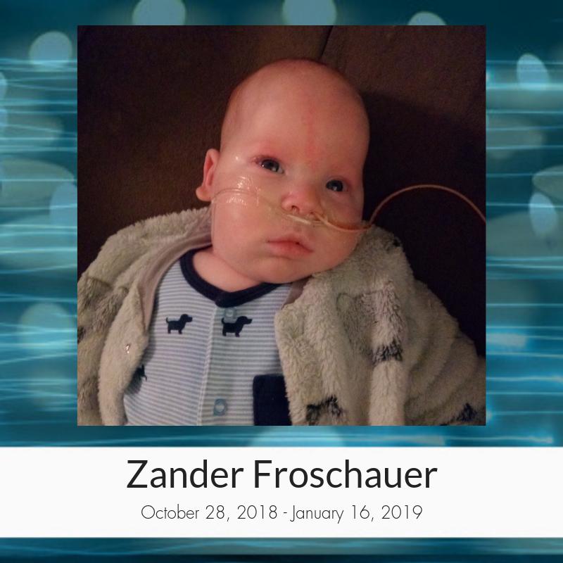 Zander_Froschauer.png