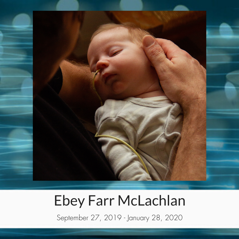 Ebey_Farr_McLachlan.png